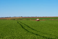 Inseticida de pulverização do trator em um campo de trigo imagem de stock royalty free