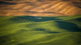 Inseticida deixando cair do espanador da colheita no Palouse Foto de Stock Royalty Free