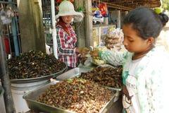 Inseto Camboja do alimento Fotografia de Stock