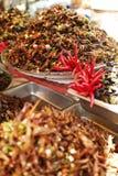 Inseto Camboja do alimento Imagens de Stock Royalty Free