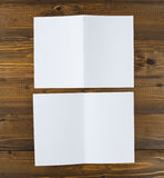 Inseto de papel de dobramento branco do banco Foto de Stock