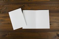 Inseto de papel de dobramento branco do banco Imagem de Stock