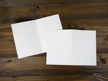 Inseto de papel de dobramento branco do banco Imagens de Stock