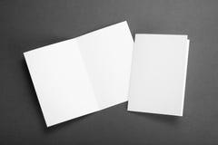 Inseto de papel de dobramento branco vazio Fotos de Stock