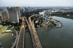 Inseto de Singapura Imagens de Stock Royalty Free