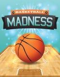 Inseto do basquetebol do vetor Fotos de Stock Royalty Free