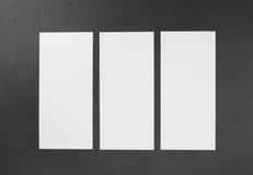 Inseto vazio do Livro Branco Foto de Stock Royalty Free
