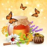 Insetos com Honey Realistic Imagem de Stock Royalty Free