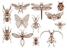 Insetos tribais de Brown para o projeto da tatuagem ou da mascote Imagens de Stock Royalty Free