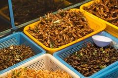 Insetti fritti Mercato di notte a Bangkok thailand fotografia stock