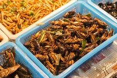 Insetti fritti Mercato di notte a Bangkok thailand fotografia stock libera da diritti