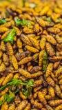 Insetti fritti, insetti fritti sull'alimento della via nel FORMATO VERTICALE della Tailandia per la storia di Instagram o la dime fotografia stock libera da diritti