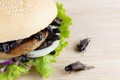 Insetto del grilli per il cibo come prodotti alimentari in hamburger del pane fatto della carne fritta dell'insetto con la verdur immagine stock libera da diritti