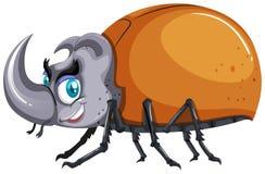 Insetto dello scarabeo su fondo bianco Fotografia Stock