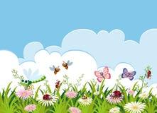 Insetto e bello modello del fiore royalty illustrazione gratis