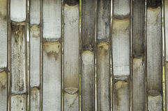 Inside Bamboo texture background Stock Photo