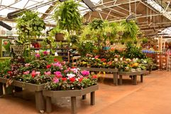 Garden center. Inside of a beautiful garden center with plants in bloom Stock Photos
