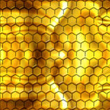 Inside the beehive Royalty Free Stock Image