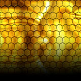 Inside the beehive Stock Photos