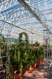 Inside of a big garden center Royalty Free Stock Photo