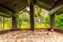 Inside the birdhouse Royalty Free Stock Image