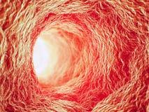 Inside a blood vessel. 3d healthcare concept illustration Stock Photography
