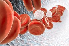 Inside blood vessel Royalty Free Stock Image