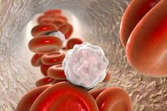 Inside blood vessel Royalty Free Stock Photography