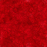 Inside body (Seamless texture). Photo of Inside body (Seamless texture royalty free illustration