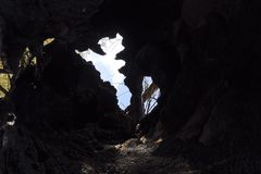 Inside a burnt tree trunk. Hollow in the trunk of a willow. fire in the forest.  stock images