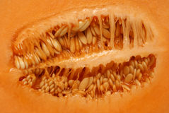 Inside a Cantaloupe Stock Photos