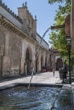 Inside the Cathedral mosque in the courtyard called `Los Naranjos` of Cordoba, Spain Royalty Free Stock Photo