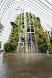 Inside cloud forest dome in singapore Stock Photo