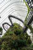 Inside cloud forest dome in singapore Royalty Free Stock Photos