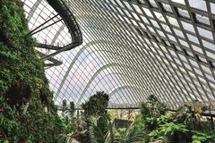 Inside the Cloud Forest in Gardens by the Bay Royalty Free Stock Photo