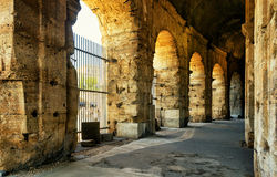 Inside the Colosseum (Coliseum) in Rome. Italy royalty free stock photo