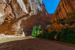 Inside the Coyote Gulch Royalty Free Stock Images