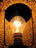 Inside of electric lamp. Portrait photograph of inside of electric lamp royalty free stock photo