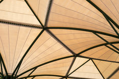 Inside of fabric roof structure stadium with plant in metal stru Stock Photo