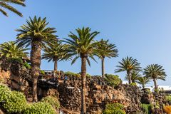 Jameos del Agua. Inside the famous volcanic cave formation Jameos del Agua on Lanzarote island Canary Islands royalty free stock photography