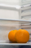 Inside Fridge. Two oranges inside fridge, sitting alone on the shelf. Copyspace provided Royalty Free Stock Photo