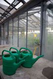 Inside a greenhouse Stock Images