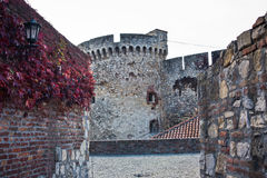 Inside Kalemegdan fortress at autumn, towers and walls with red leaves, Kalemegdan, Belgrade Stock Photography
