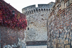 Inside Kalemegdan fortress at autumn, towers and walls with red leaves, Kalemegdan, Belgrade Royalty Free Stock Photo