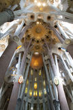 Inside La Sagrada Familia. Church in Barcelona royalty free stock image