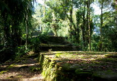 Inside the Lost City. Inside Colombia`s Lost City with overgrown terraces Stock Photography