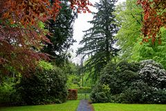Inside a lush park landscape at rainy day in spring royalty free stock photos