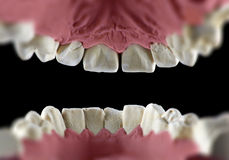 Inside mouth Royalty Free Stock Photos