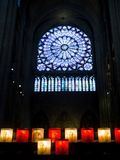 Window of Notre Dame royalty free stock photos