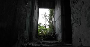 Inside the old abandoned ruined building stock footage